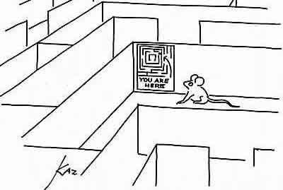 20061010-rats_maze